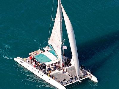 Two Hour Catamaran Charter in Marbella